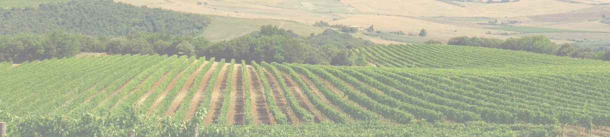 La Poderina Vineyards