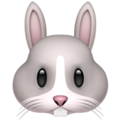 emoji-rabbit