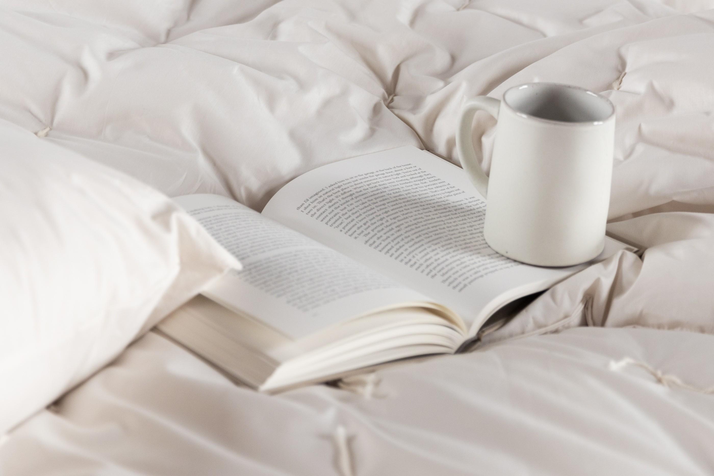 tea, reading a a winter's nap