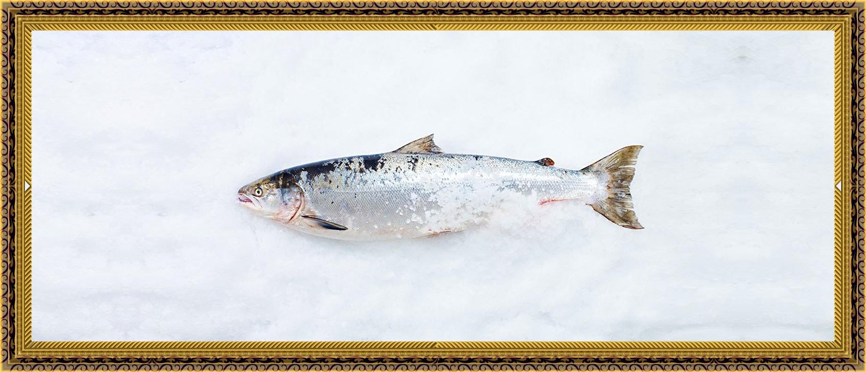 The Smoked Salmon Celebration by Daniel Boulud